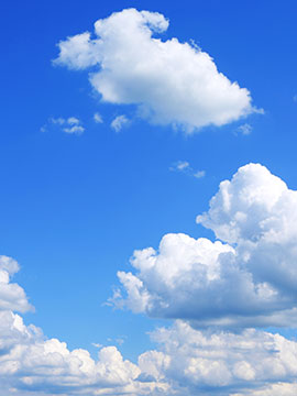 Lawrence Elder